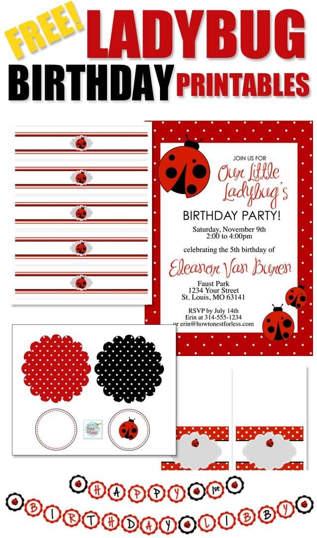 Ladybug Birthday Invitations Template
