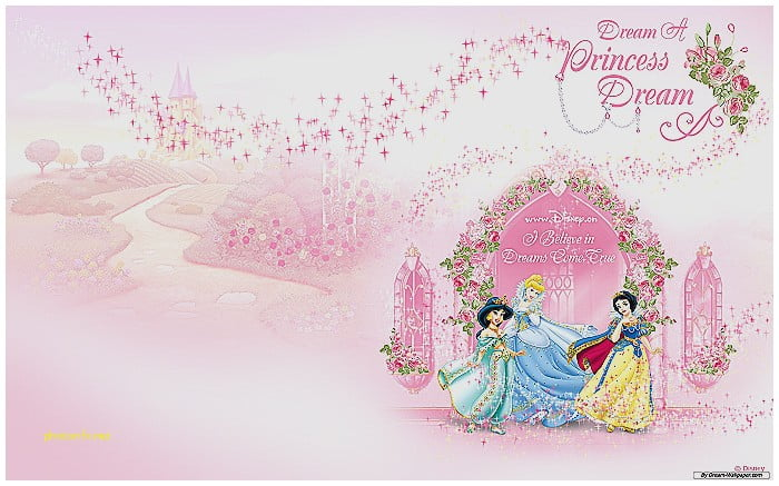 Princess Party New Princess Invitations Templates