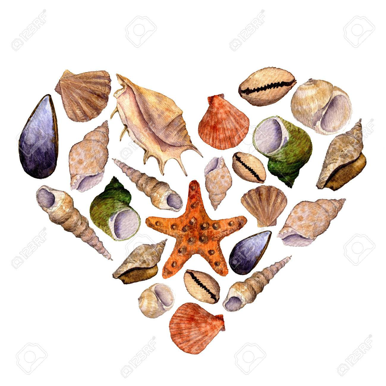Heart With Watercolor Drawing Shells, Starfish And Seashells