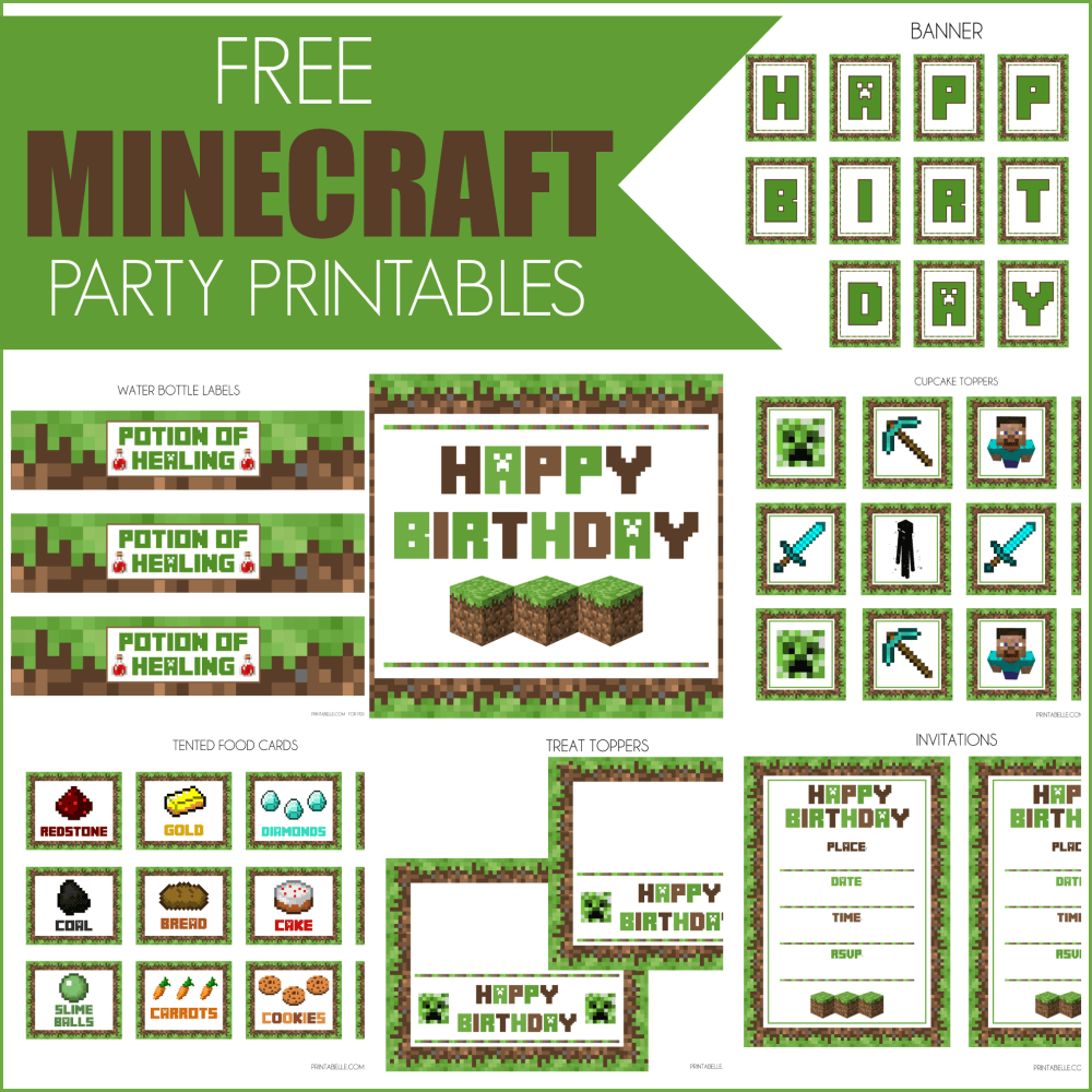 Printable  Minecraft Birthday Party Ideas Printable